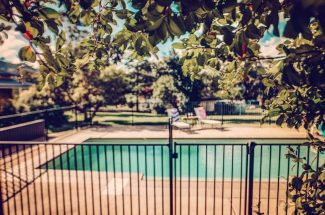 Leaning Oak – Saltwater Pool